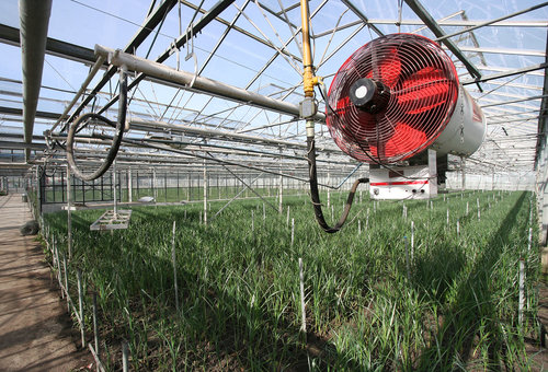 Holland-hydroponics-heating-cooling