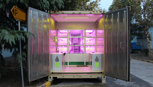holland-hydroponics-grow+container