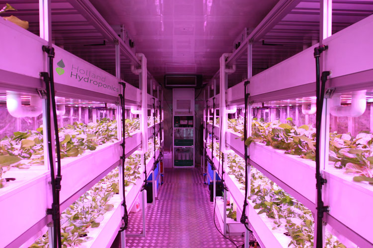 holland-hydroponics-grow+container+2